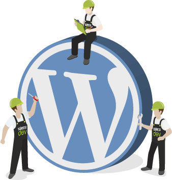 assistenza wordpress, temi e plugins personalizzati