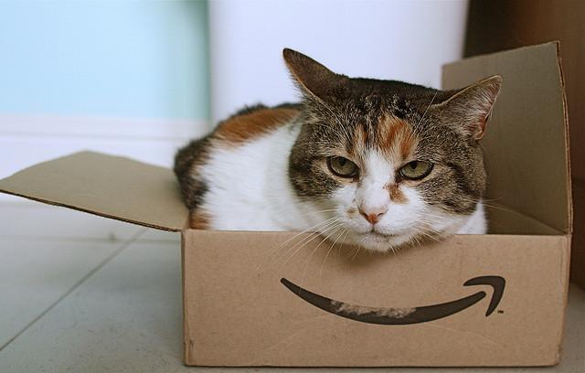 """Amazon: """"Il segreto del successo? Pensiamo di essere ancora una startup"""""""